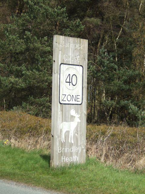 Cannock Chase Boundary Marker