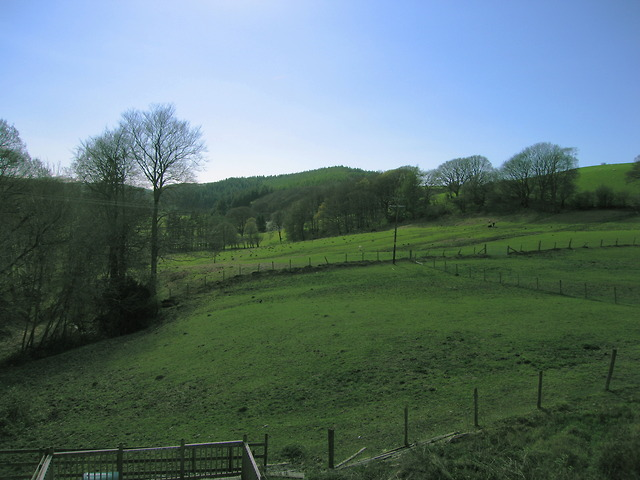 Fields west of Cnwch Coch
