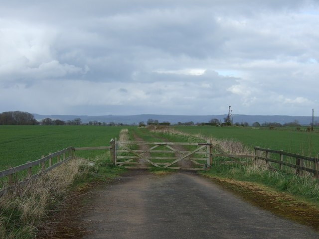 Gated farm track off the A167