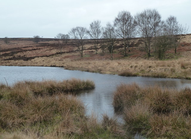 Head of a small reservoir on Big Moor