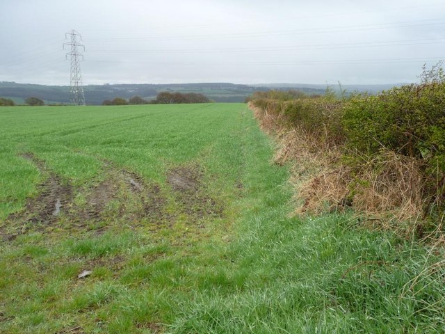 Farmland south of Ashtree Lane