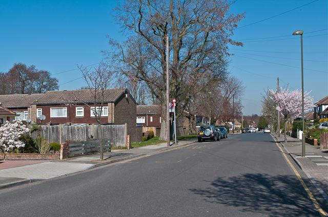 Allington Drive