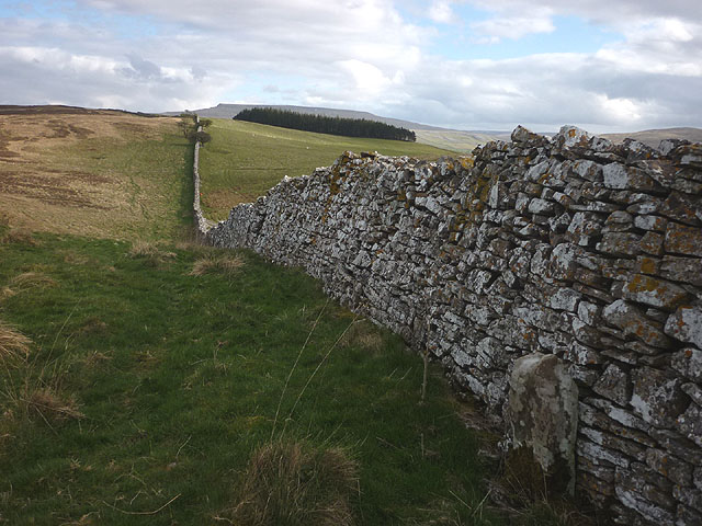 Jervis Cross and the boundary wall of Ravenstonedale Park