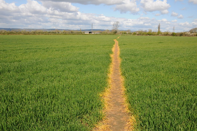 Footpath to Shepherd's Patch