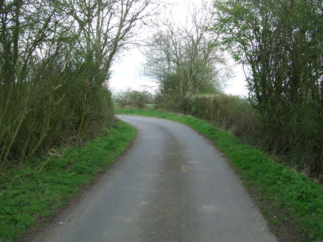 Will's Ayley Lane