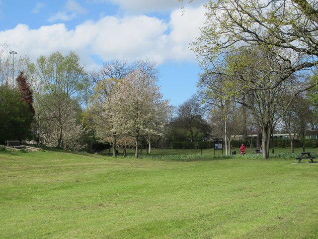 Brandling Park
