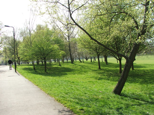 View through the Downhills Park