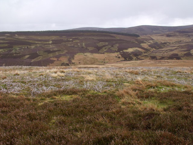 Heather slopes east of Burn of Blair near Glen Lethnot
