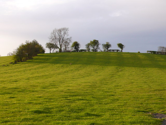 Ridge and Furrow Markings