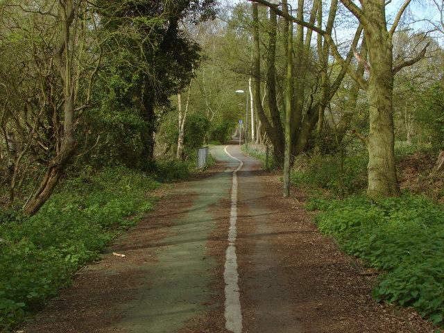 Footpath, Addlestone Moor