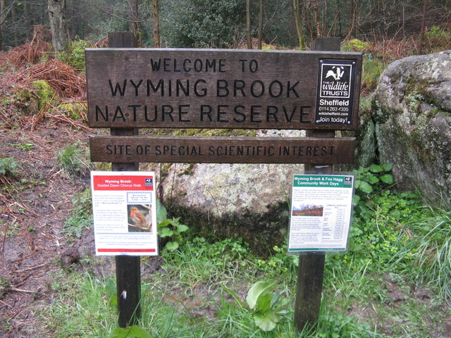 Wyming Brook Nature Reserve, Sheffield