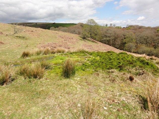 A Green Mound