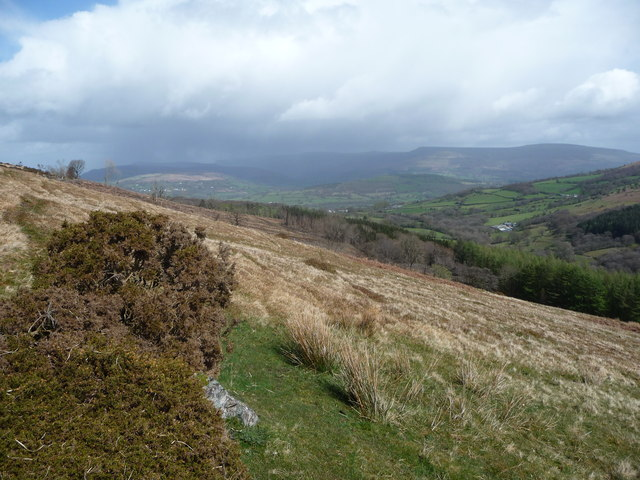 Spring in the Black Mountains