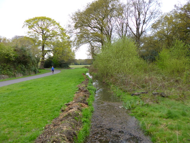 Southampton Common, ditch