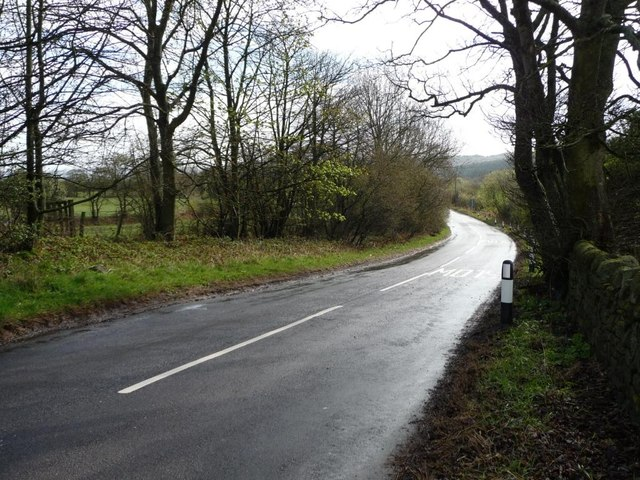 Holmside Lane near Whiteside Farm