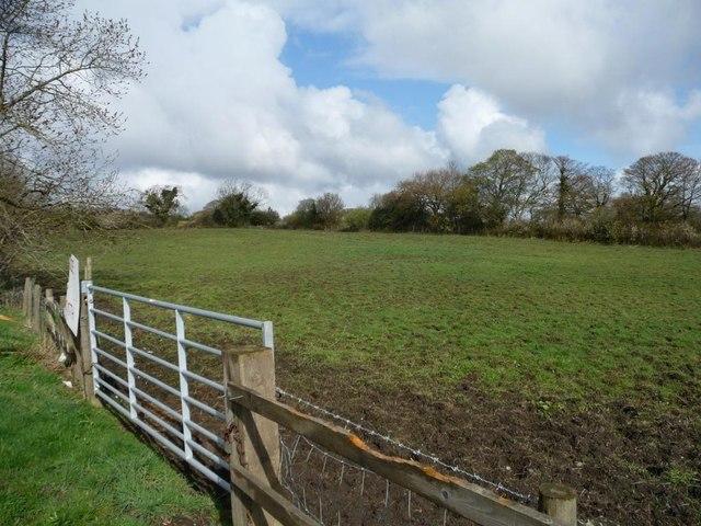 Gate into pasture field
