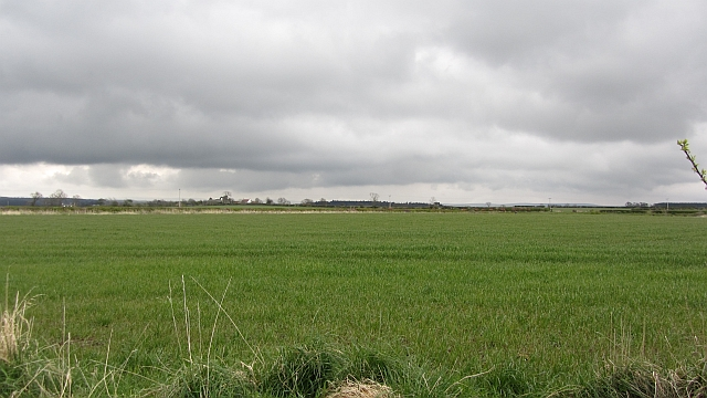 Arable land, East Mains