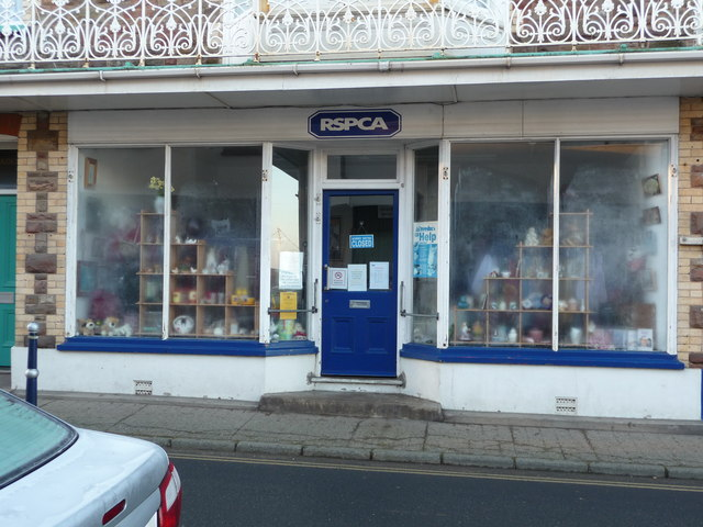 The RSPCA charity shop, 2 Borough Road, Combe Martin