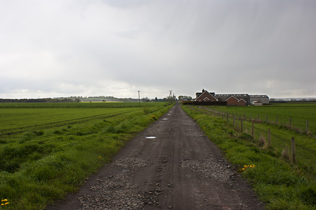 The track over Rixton Moss