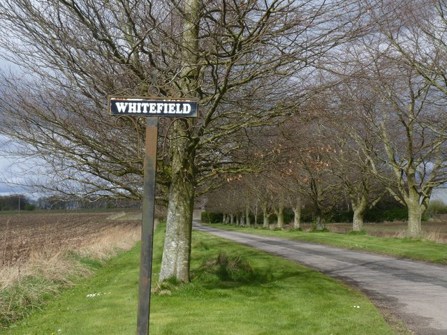 East Whitefield Farm