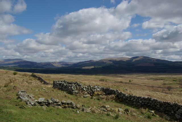 Ruined enclosure & drystane dyke SE of Top of the Fell