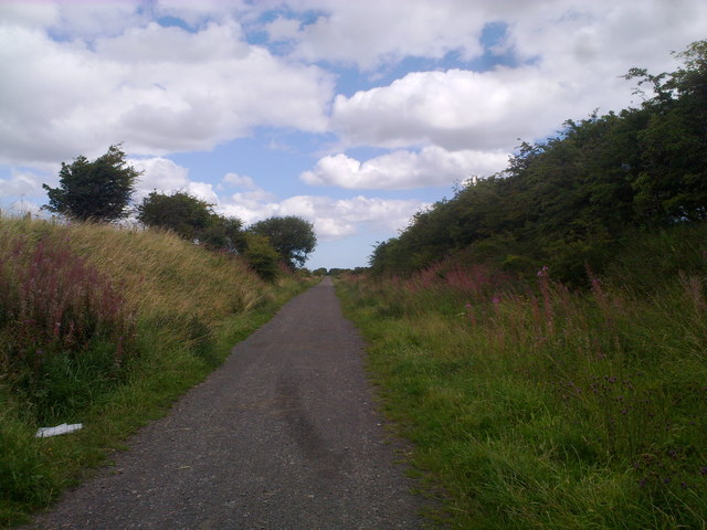 Old railway walk near Murton