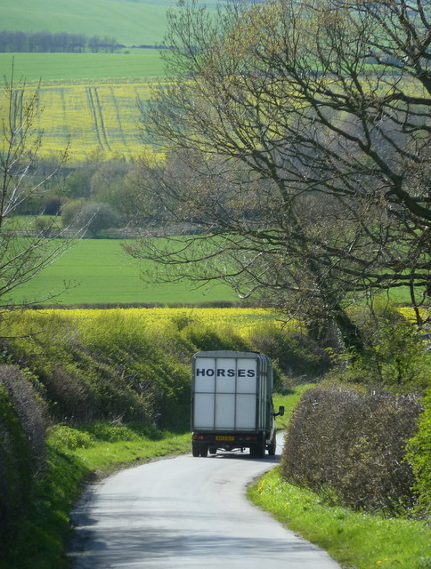 English country lane in the spring