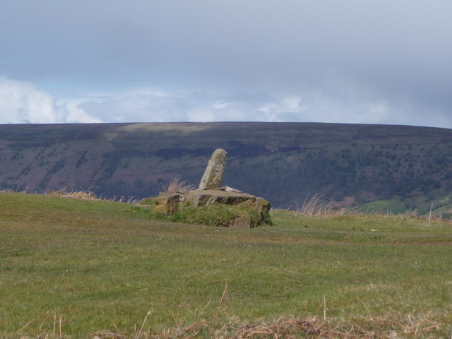 Dialgarreg / The Revenge Stone in the Black Mountains