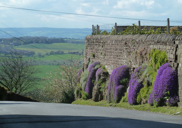 Lane and wall at the top of the hill, Palterton