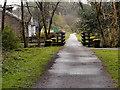 NN5200 : Cycletrack and Bridge over Allt a'Mhangam by David Dixon