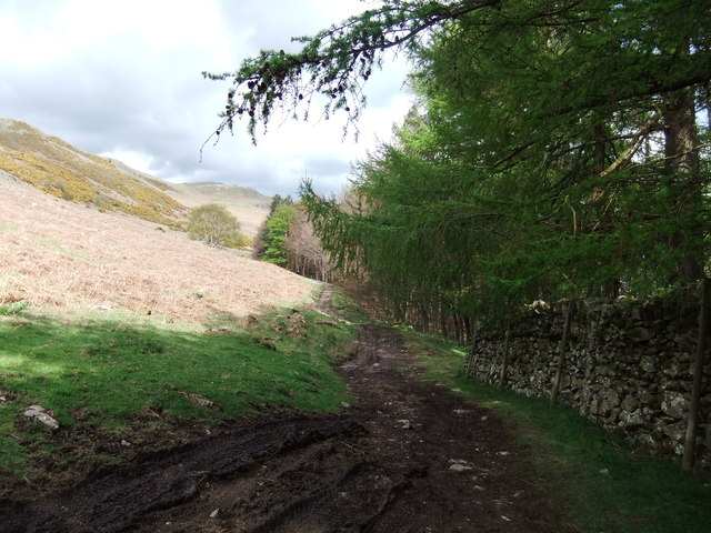 Path by Haweswater