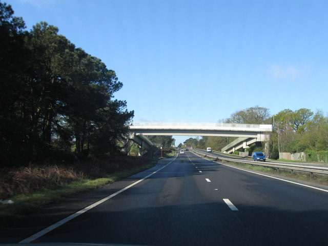 The A31 westbound, footbridge