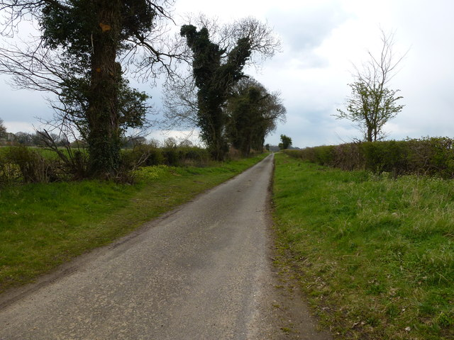 Country lane to Little Barwick