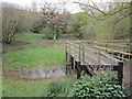 SJ7255 : One of the ponds at Crewe Business Park nature trail by Ian S