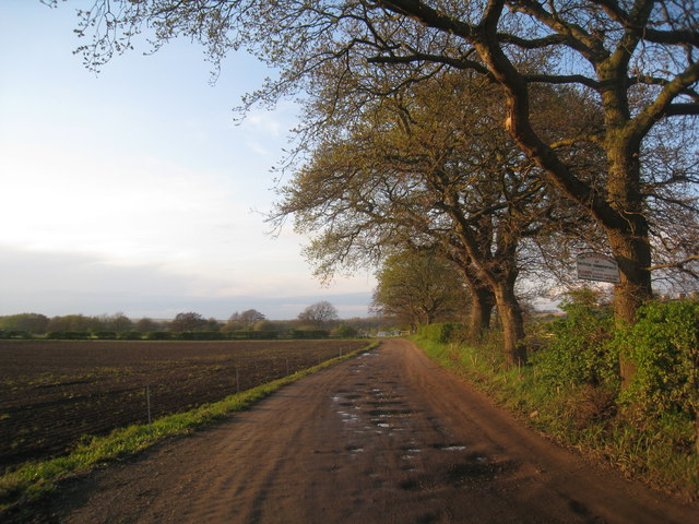 Track to Caistor Moor farm