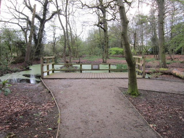 A pond at Quaker's Coppice, Crewe