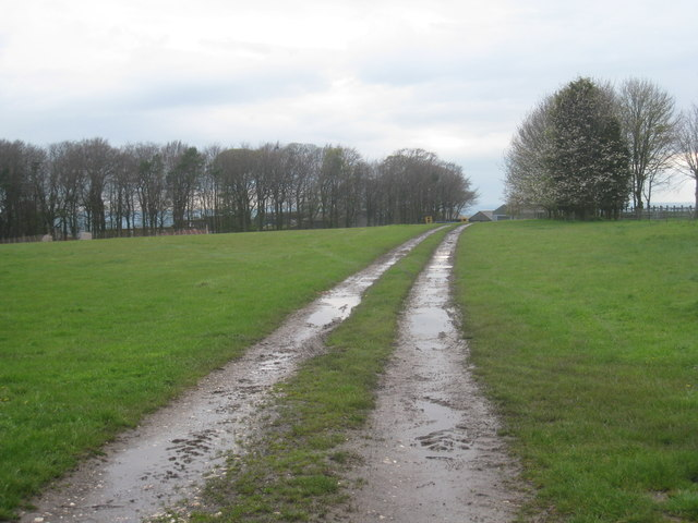 Farm track at Normanby Lodge