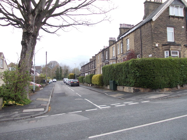 Maple Terrace - Kirk Lane