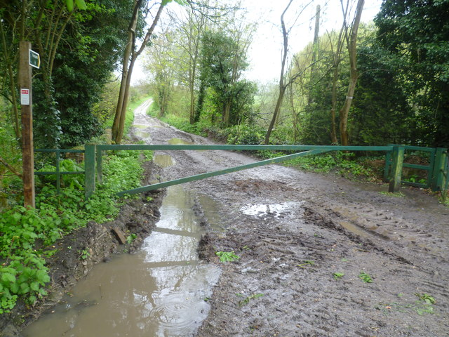 Muddy Wealdway and Greensand Way