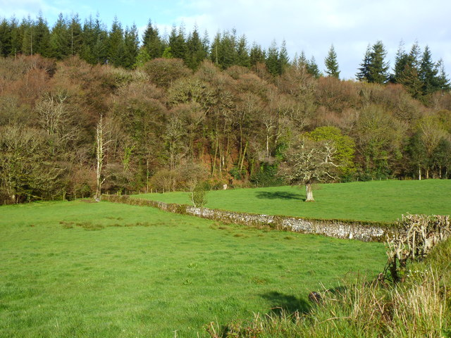 The Yealm Valley near Moor Cross, Cornwood