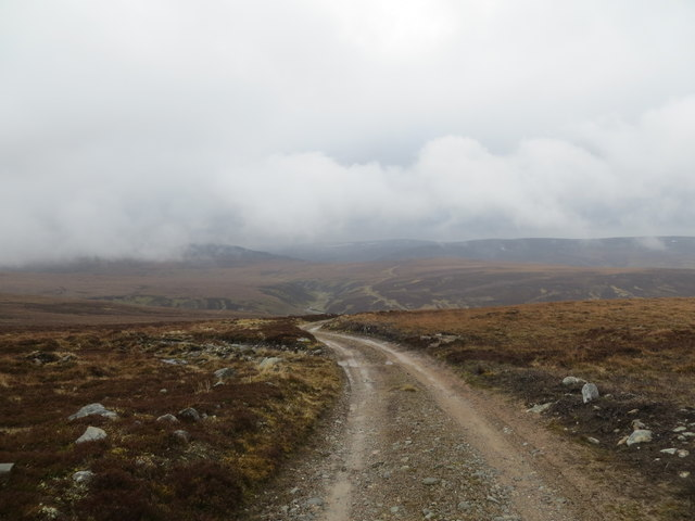 Estate track to Dulnain