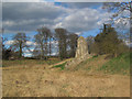 SP9908 : The West Moat after a dry winter by Chris Reynolds