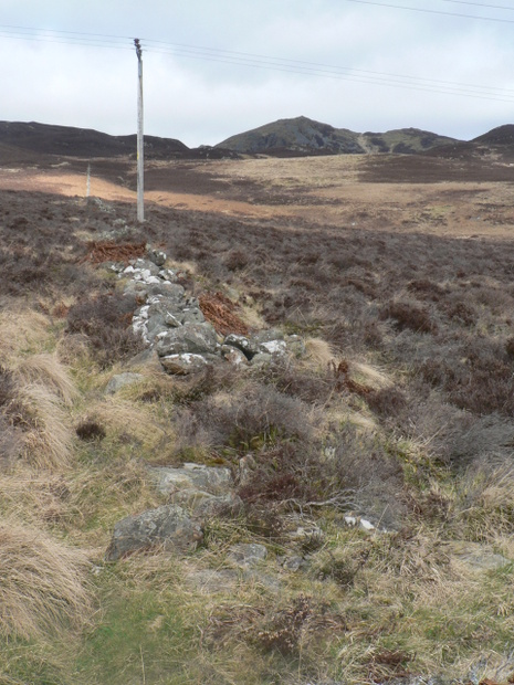 Dry Stane Dyke