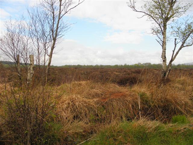 Fartrin Townland