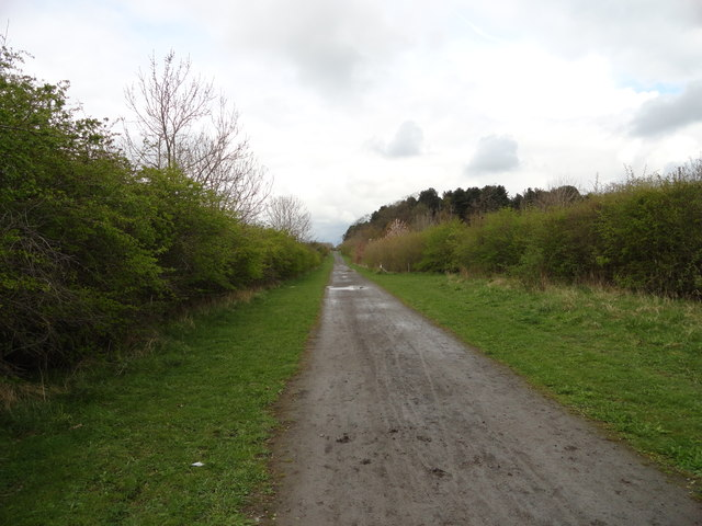Looking along the footpath