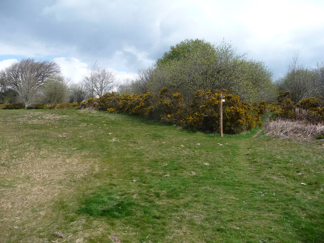 Footpath off Racecourse Common