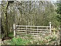 NZ1544 : Gate at the edge of Ragpathside Plantation by Christine Johnstone