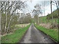 NZ1545 : Narrow lane in the Browney valley by Christine Johnstone