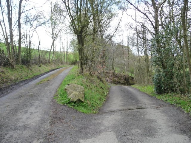 The road across the Browney to Colepike Mill