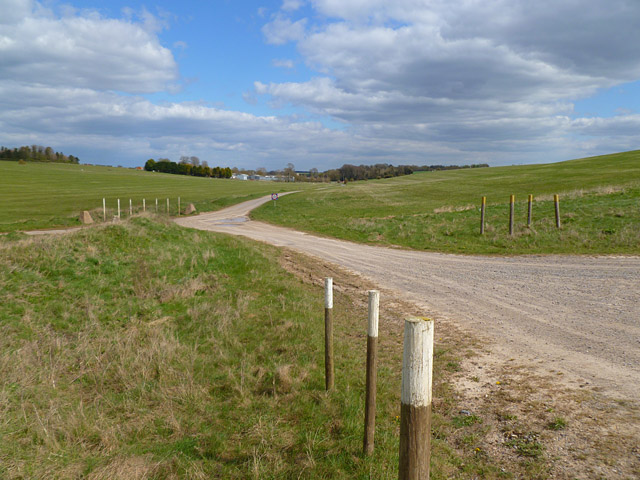 Track and downland, Netheravon